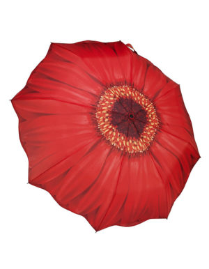 Galleria Auto Folding Umbrella – Red Daisy