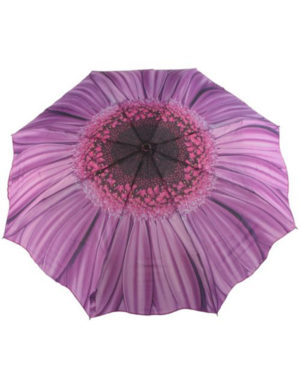 Galleria Auto Folding Umbrella –  Purple Daisy